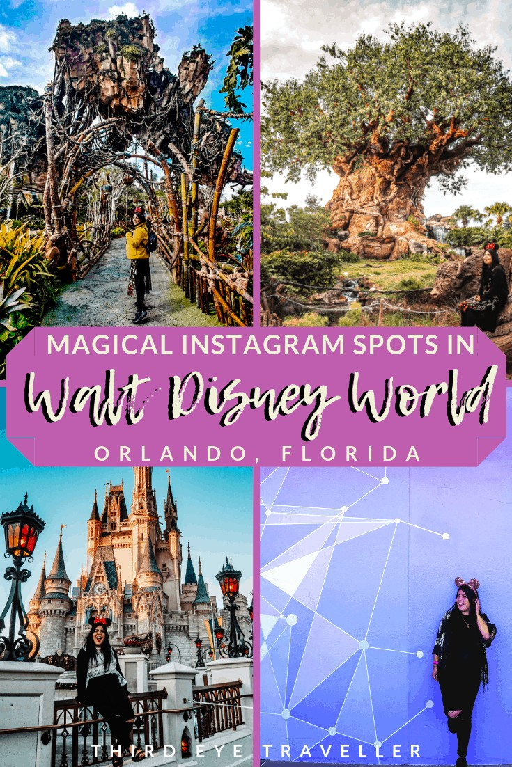 instagram spots walt disney world