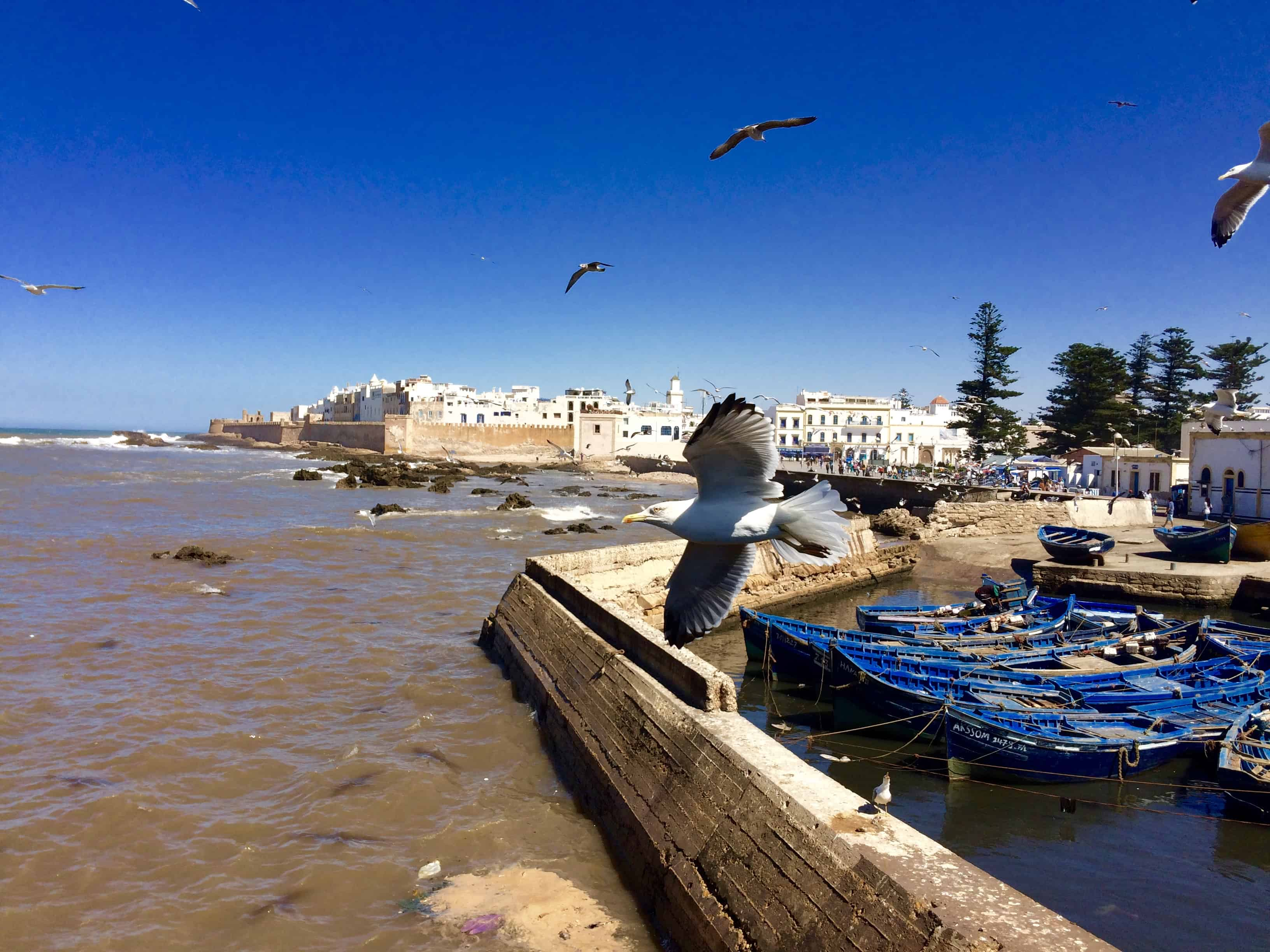 Things to do in Essaouira Morocco