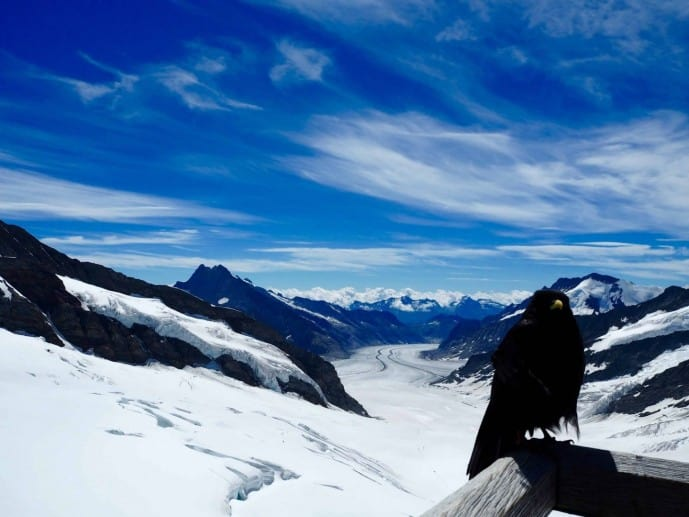 The view from the Sphinx on Jungfraujoch top of Europe