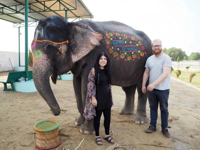 elephantastic jaipur
