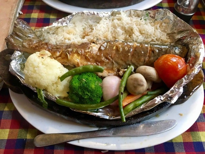 himalayan fish manali