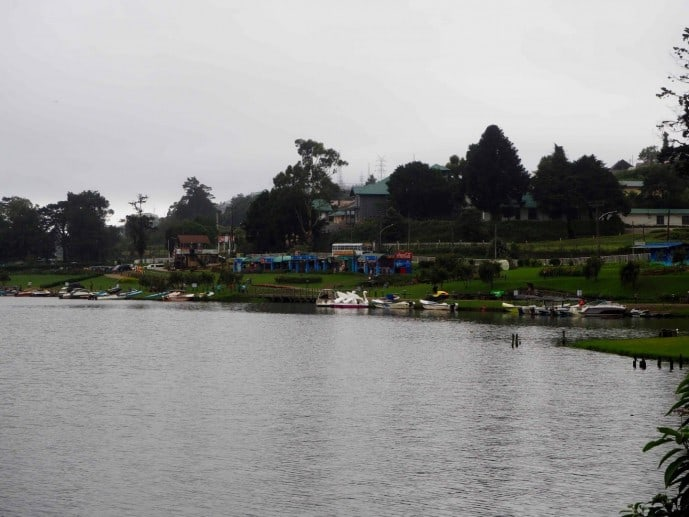 top things to do in nuwara eliya