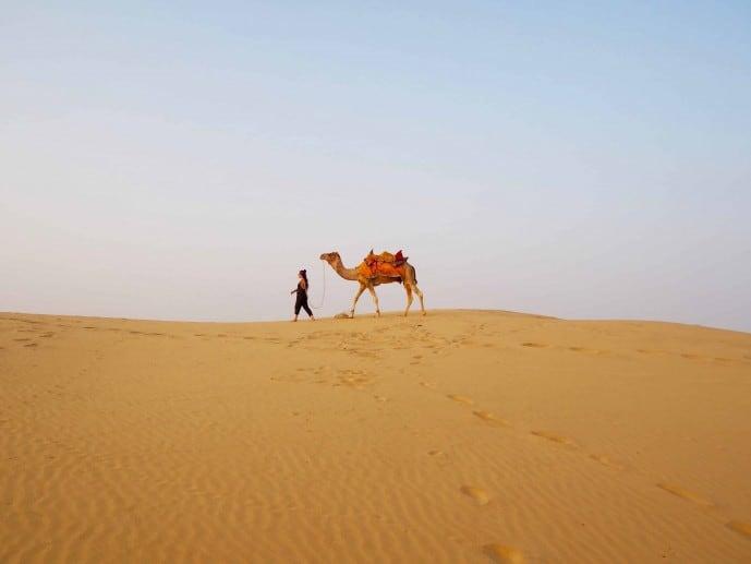camel safari in jaisalmer | Jaisalmer Camel safari tips