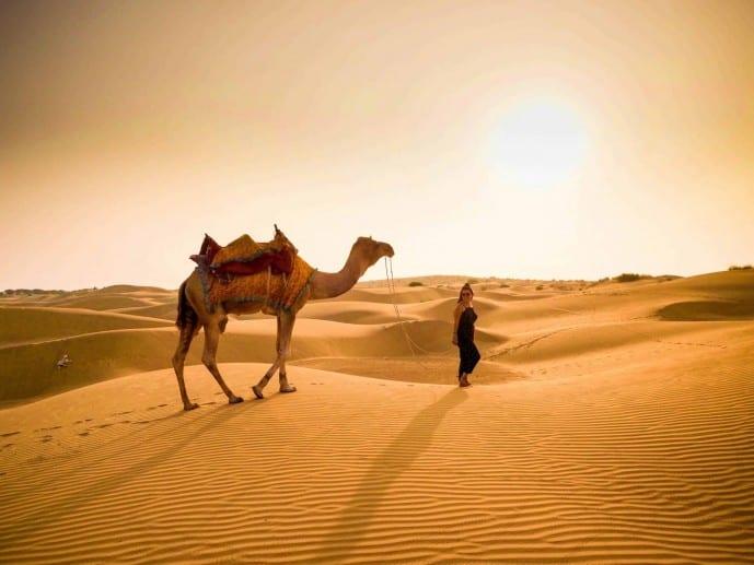 camel safari in jaisalmer tips