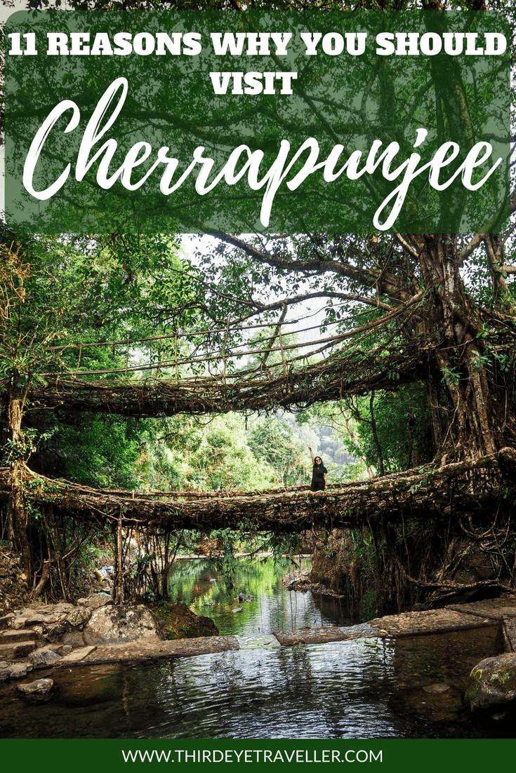 CHERRAPUNJEE 2 2