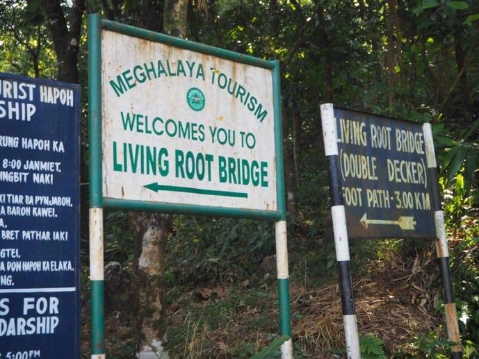 how to reach the double decker living root bridge cherrapunjee