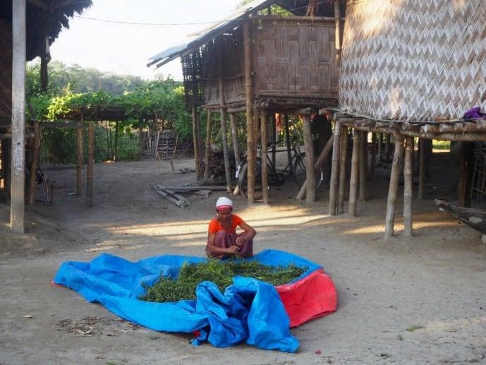 majuli island travel guide 2018