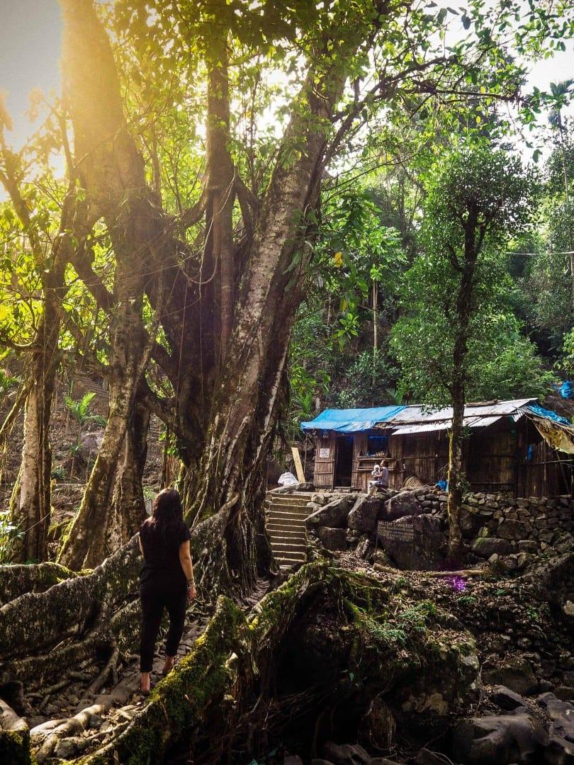 visit meghalaya photo essay