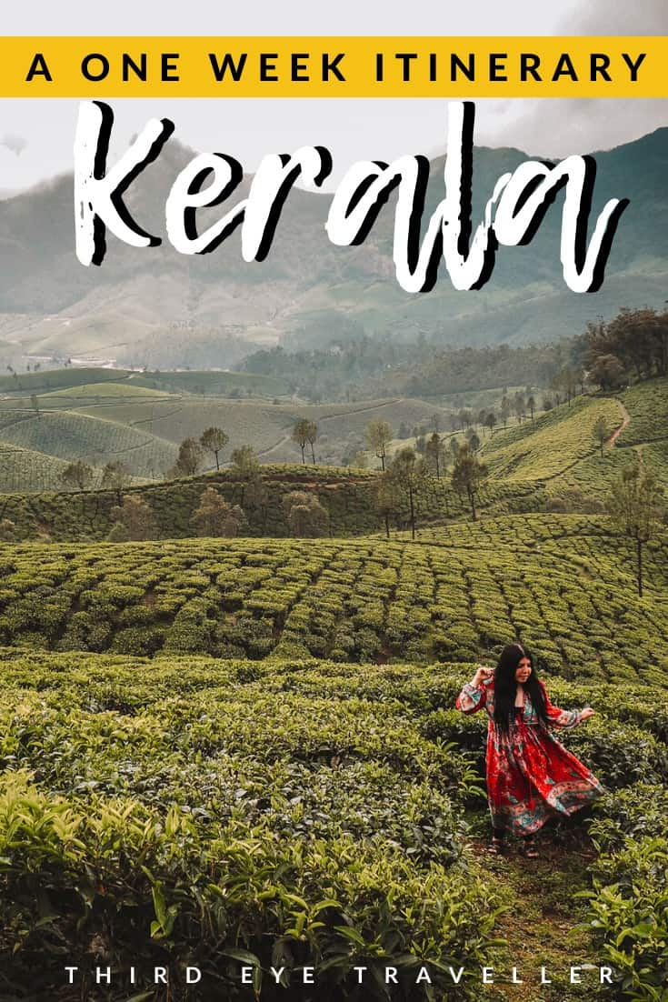 7 days in Kerala itinerary | One week in Kerala