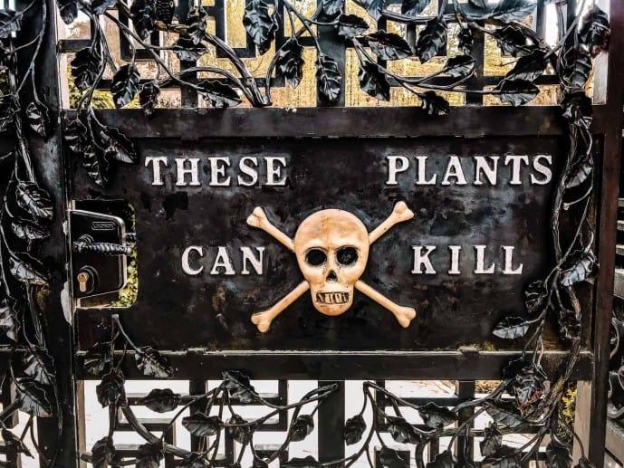 Alnwick Poison Garden gates