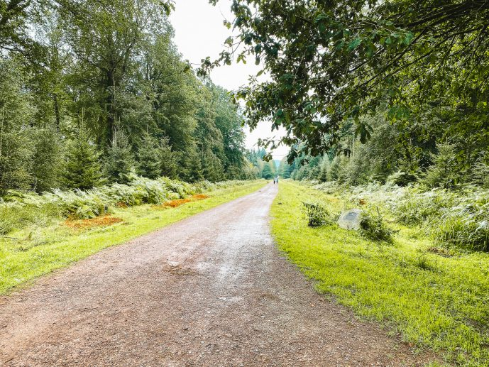 Cyril Hart Arboretum Car Park
