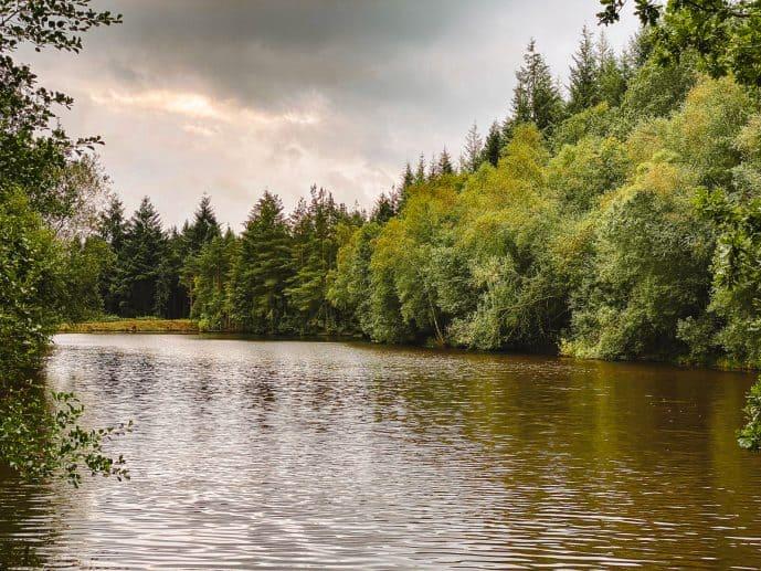 Speech House Lake Merlin Filming Location
