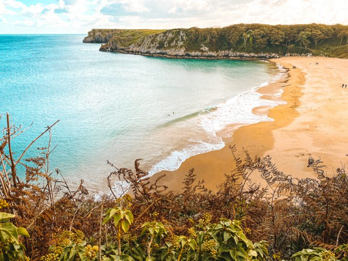 The view of Barafundle Bay Beach from the clifftops!
