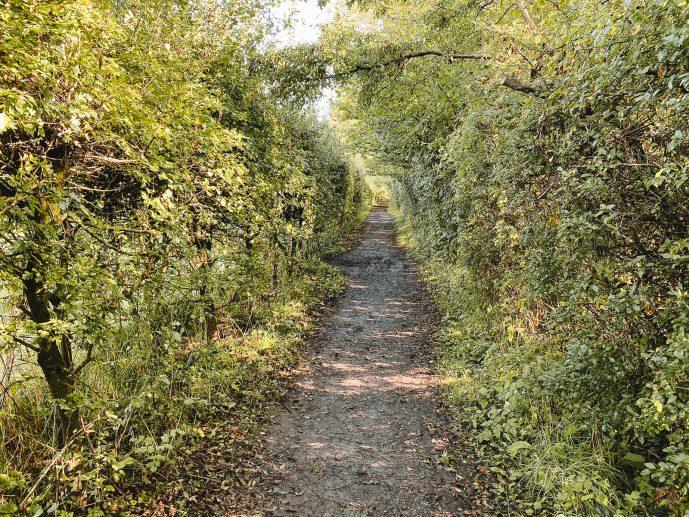 The walk to Bryn Celli Ddu
