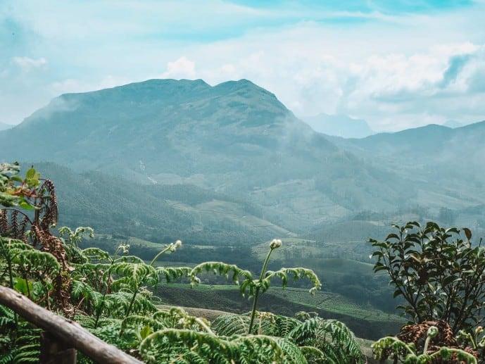 Eravikulam National Park views