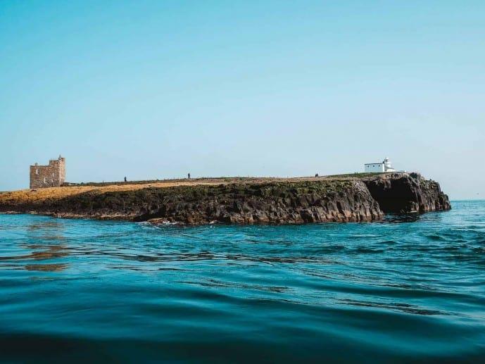 Inner Farne Island National Trust