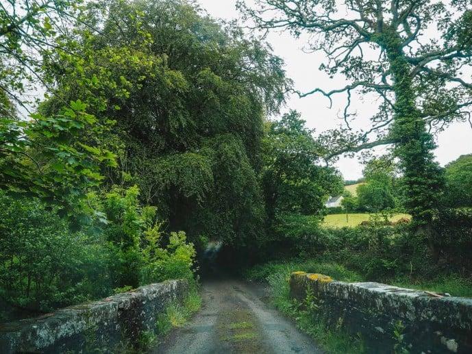 Bodmin Moor roads