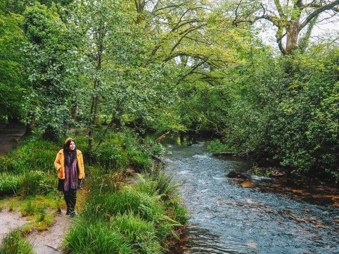 Golitha Falls walks