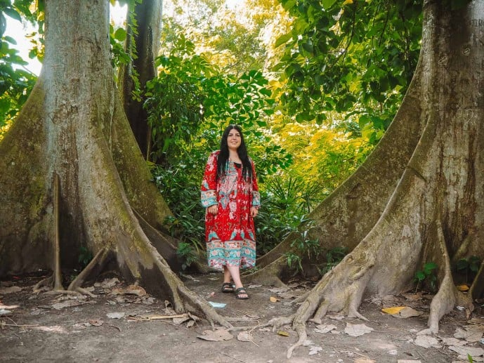 Kolkata Botanical Gardens