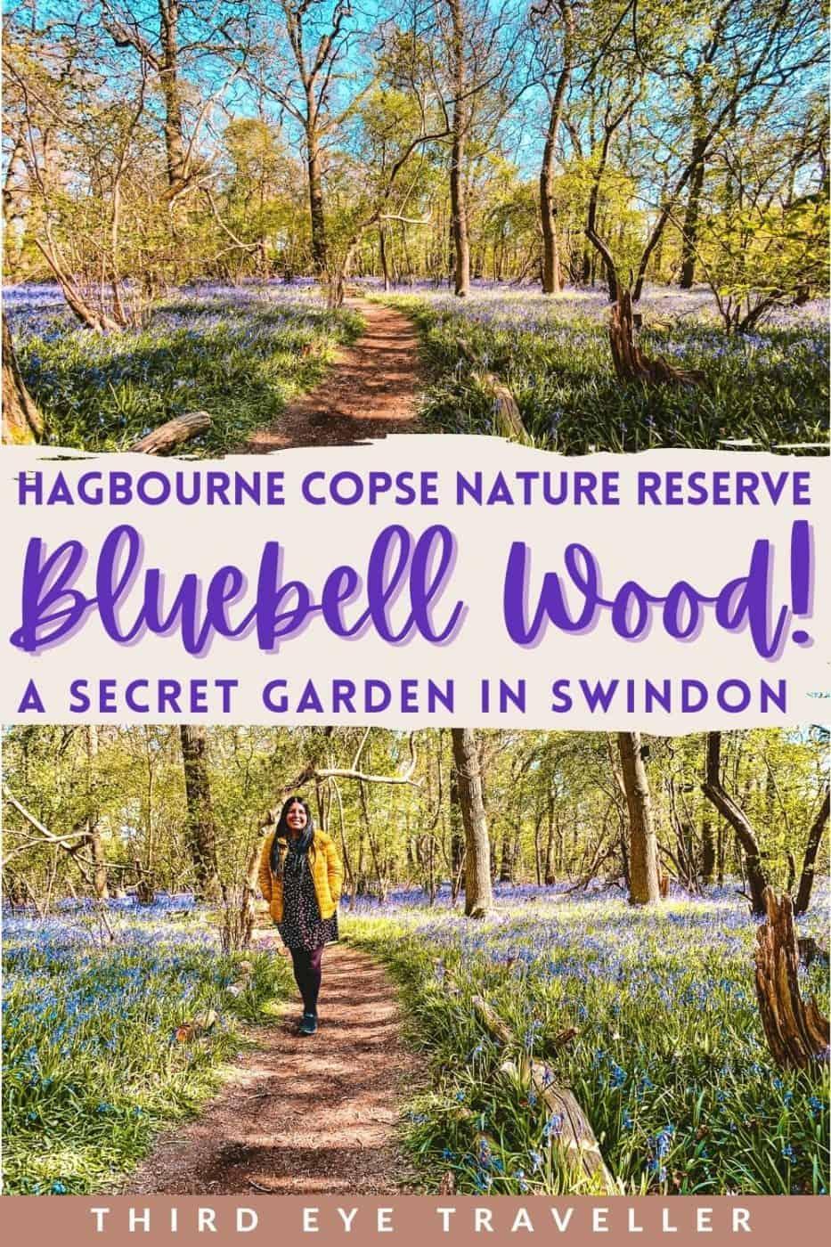 Hagbourne Copse Nature Reserve Bluebell Wood Swindon