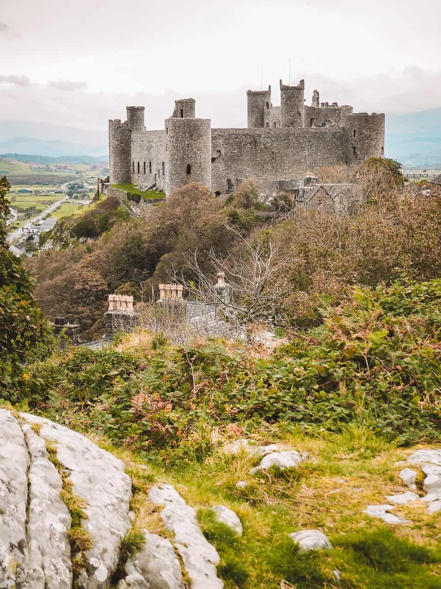 Harlech Castle Viewpoint