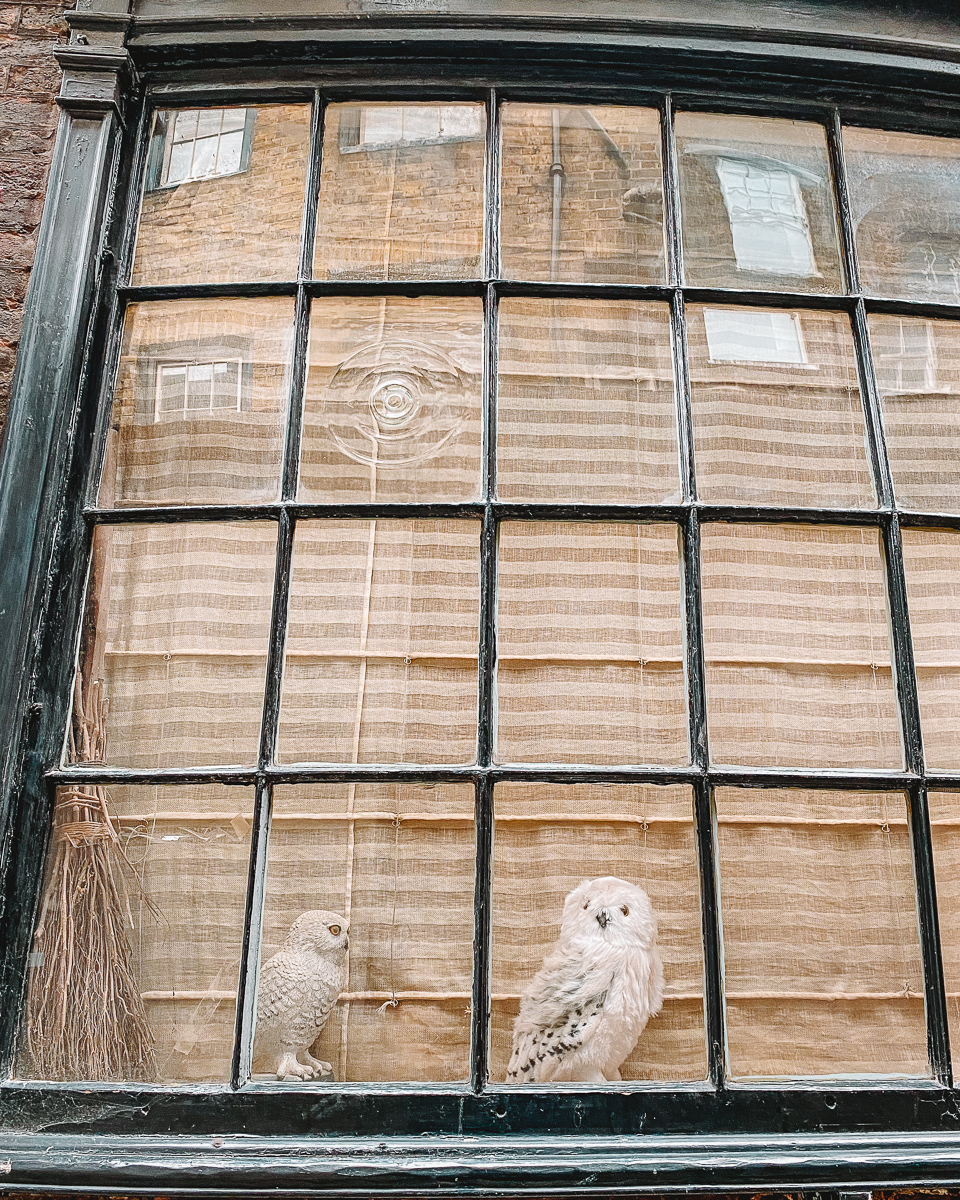 Hedwig and Broomstick display at Goodwin's Court London