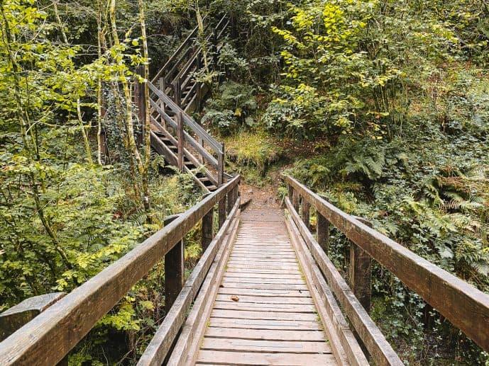 Walking Footbridge over the Nant Llech Gorge!