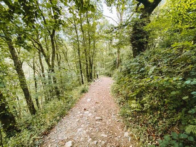 National Trust path to Henrhyd Falls from cAr park