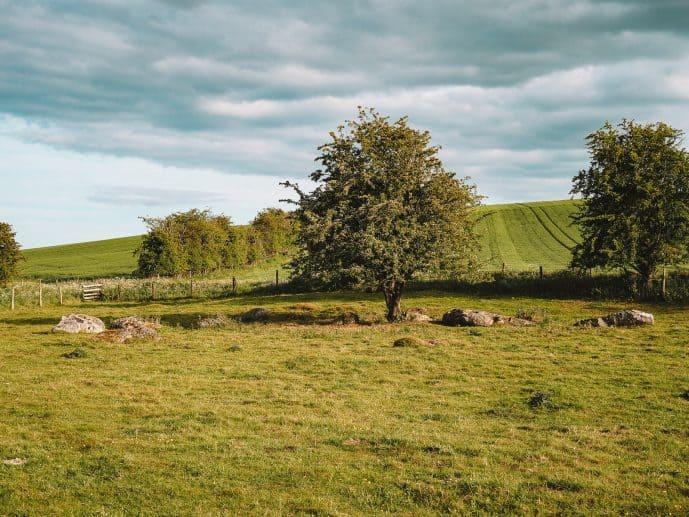 Fyfield Down Wiltshire