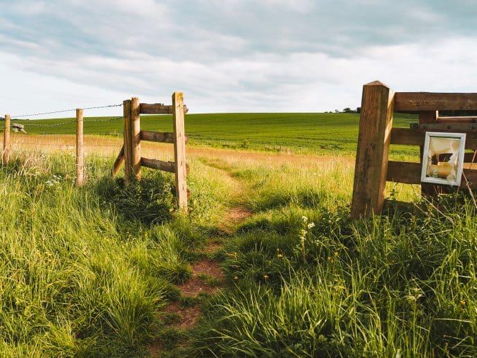 Fence near Devil's Den on Fyfield Down