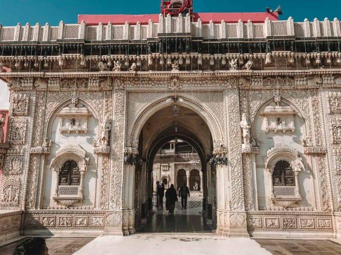 Temple of Rats India | Rat Temple