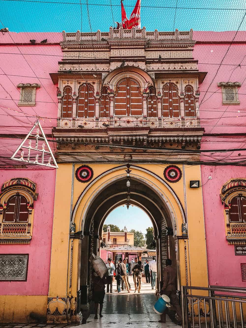 Rat Temple in India | Karni Mata Temple