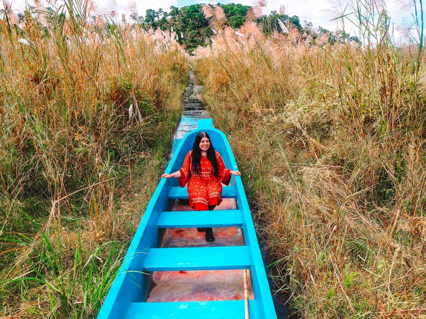 Boat ride in Keibul Lamjao National Park Loktak Lake Sangai