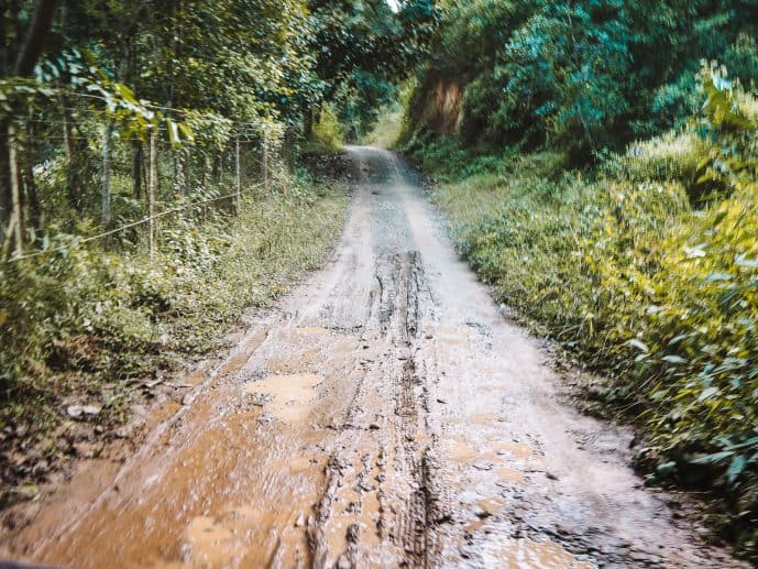 walking trail in Keibul Lamjao National Park