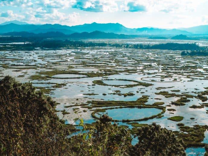 Loktak Lake Phumdi rings
