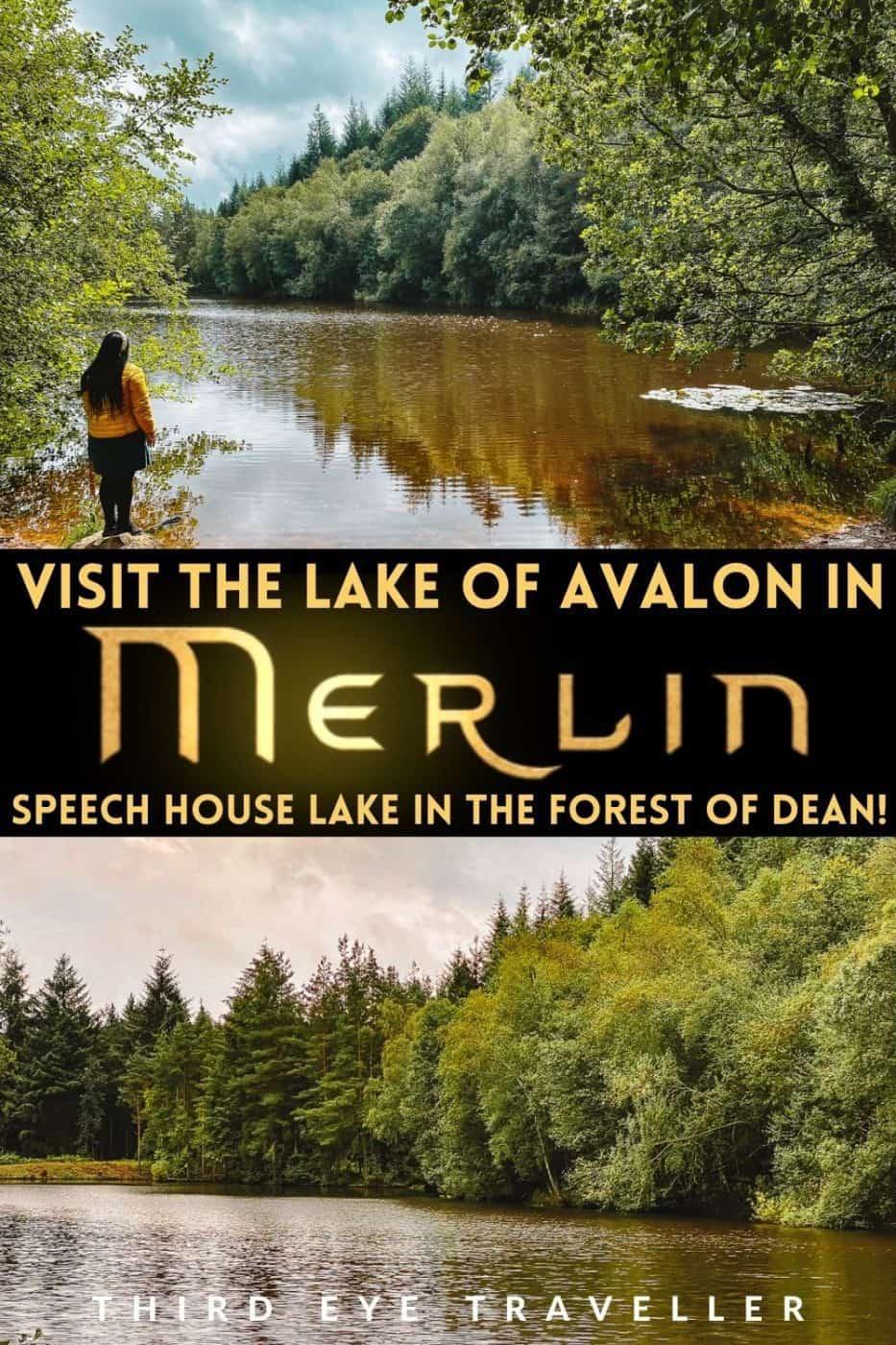 Merlin Speech House Lake Avalon Forest of Dean