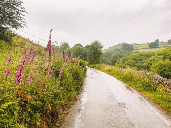 The road from gradbach mil