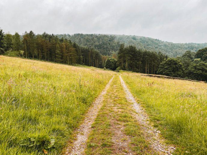 public pathway in Gradbach