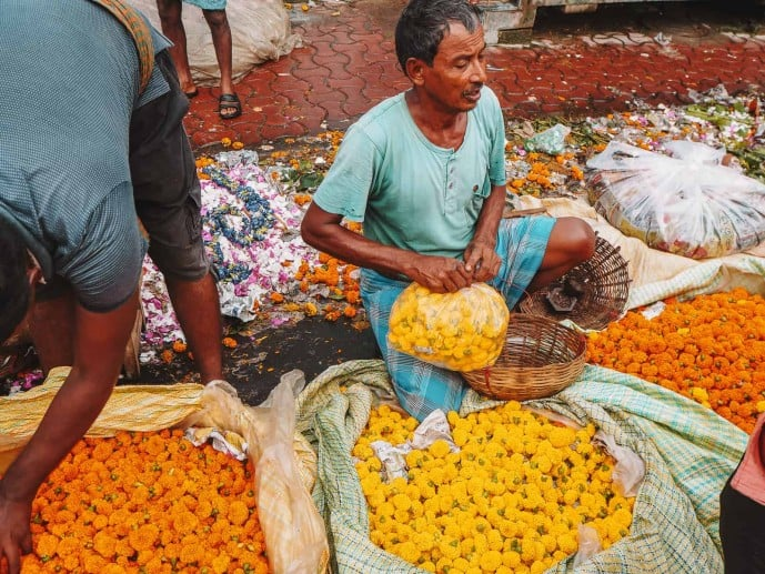 Marigolds in India flower market