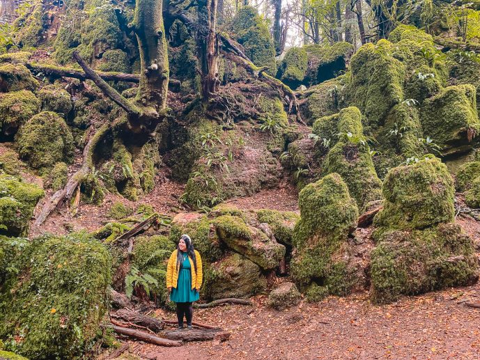Merlin Puzzlewood filming locations