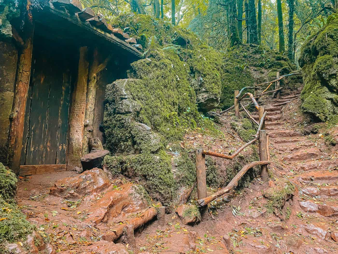 Morganas Hovel Hut in Puzzlewood