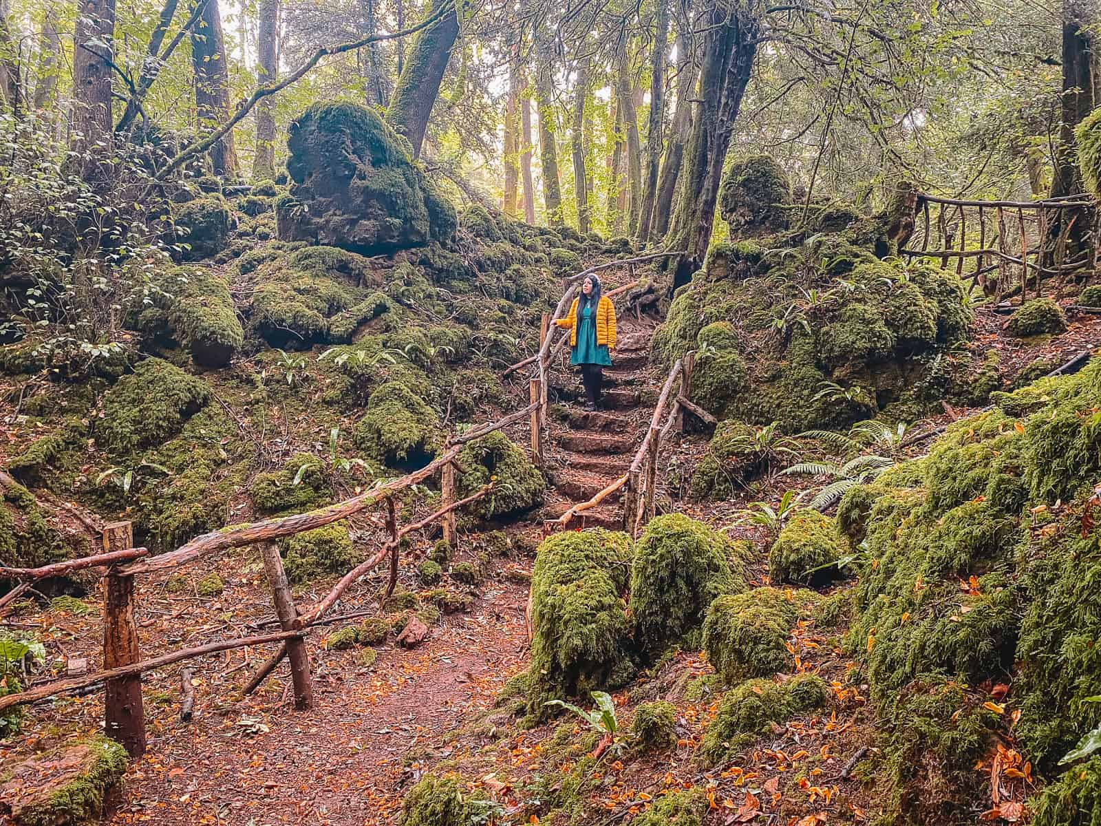 Merlin Puzzlewood Filming Location Forest of Dean
