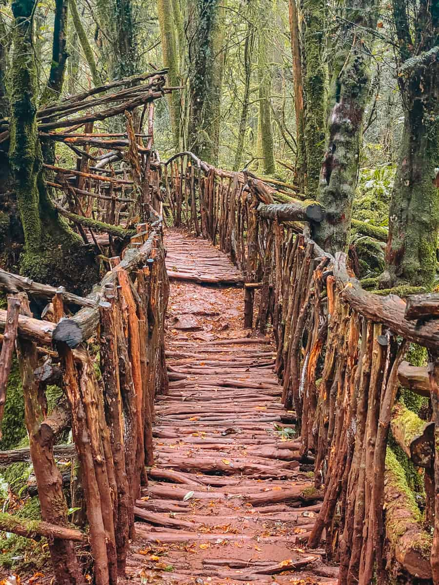 High Bridge Puzzlewood