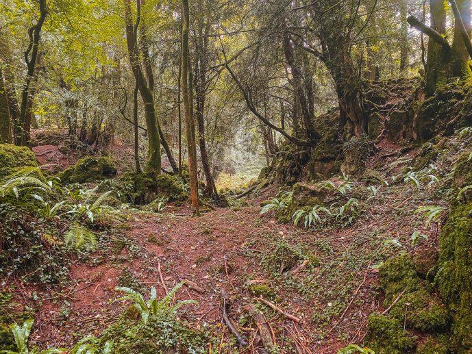 Labyrinth of Gedref Merlin