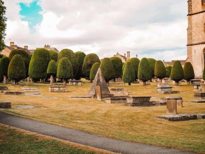 99 Painswick Yew Trees