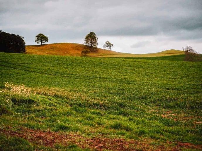 Robin Hood's Hill