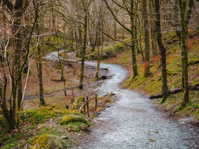 Walking path to Rydal Cave through White Moss