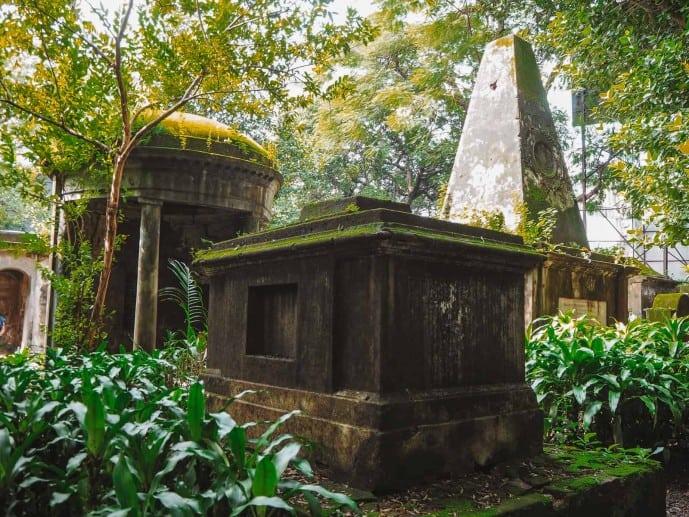 South Park Street Cemetery Moss