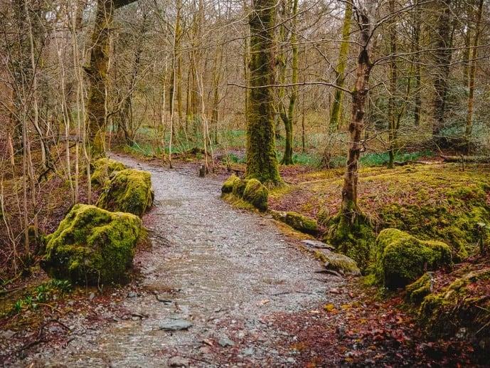 Stock Ghyll Falls Walk