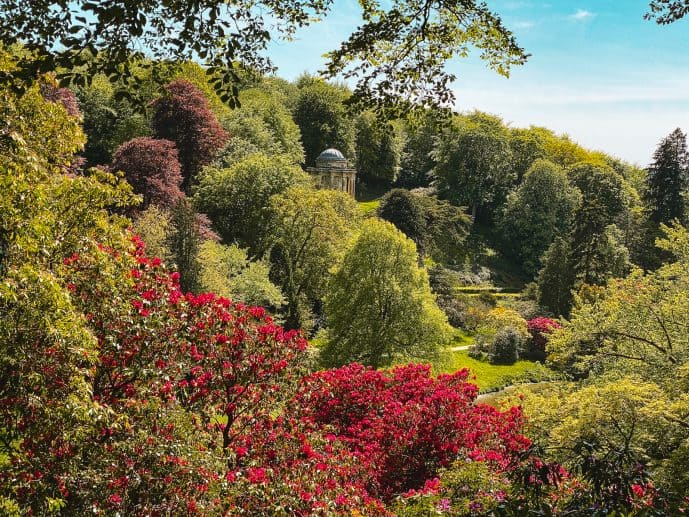 The temple of Apollo surrounded by Rhododendrons